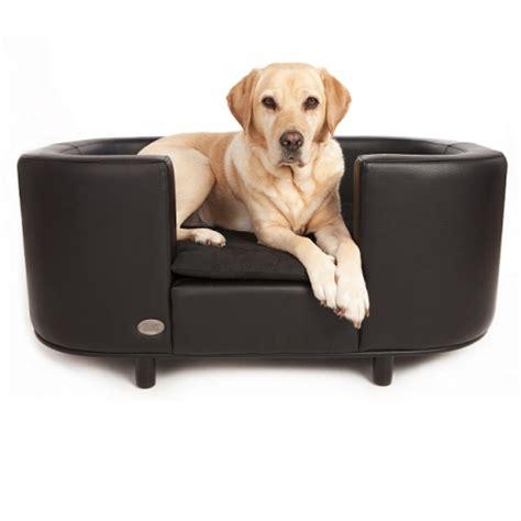 canapé pour chien canapés et sofas pour chien oh pacha