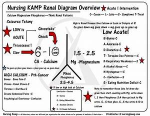 986 Best Images About Chronic Kidney Disease On Pinterest