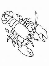 Lobster Coloring Drawing Animal Simple Drawings Printable Ocean Animals Getdrawings Activities sketch template