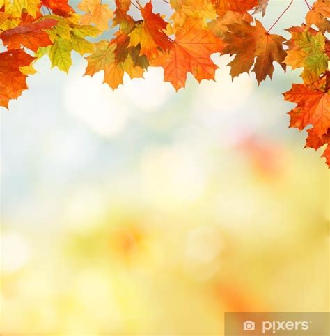 Falling Leaves Live Fall Backgrounds by Autumn Background Sticker Pixers 174 We Live To Change