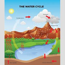 Water Cycle Game  Science World British Columbia