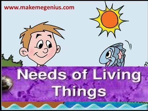 Needs Of Living Things Animation Kindergarten Prescoolers Kids Youtube