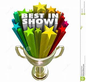 Best In Show Trophy Award Top Performer Winner Prize Stock ...