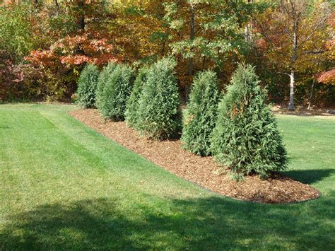 berms in landscaping cn r lawn n landscape photo
