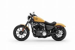 Harley Davidson 2019 : 2019 harley davidson iron 883 guide total motorcycle ~ Maxctalentgroup.com Avis de Voitures