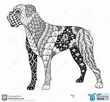 Boxer Coloring Dog Zentangle Vector Illustration Dogs Printable Stylized Pages Colored Freehand Mom Zen Tattoo Animal Funny Sheets Puppies Pattern sketch template