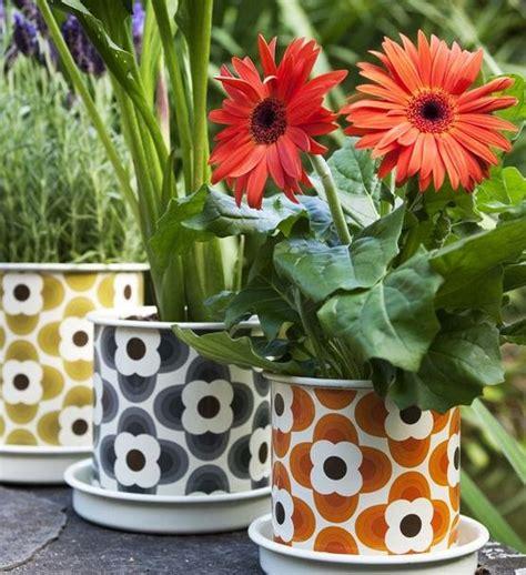 gerbera en pot entretien quelles fleurs pour d 233 corer votre balcon