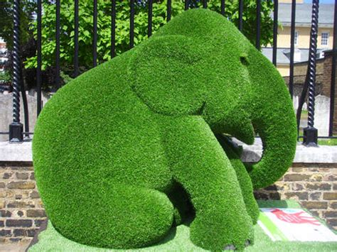 baby elephant  painted parade xcitefunnet