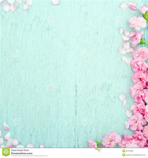 blue wooden background  pink flowers stock image