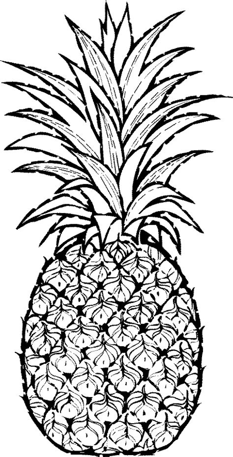 pineapple outline vector pineapple clipart black and white free clipart 2
