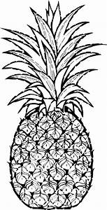 Cartoon Pineapple clipart - Pineapple Fruit clip art ...
