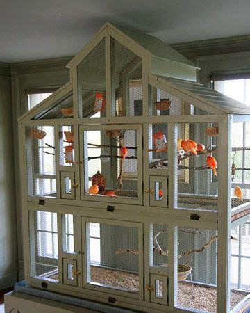 bird aviary ideas  pinterest diy bird cage pet bird cage  parakeet cage