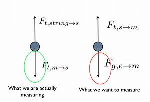 Construct A Diagram Of A Mass Hanging From A Spring Scale What Are The Forces Acting On The Mass