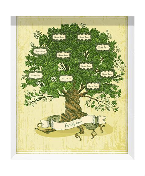 Family Tree Templates With Siblings by Family Tree Template 10 Free Psd Pdf Documents