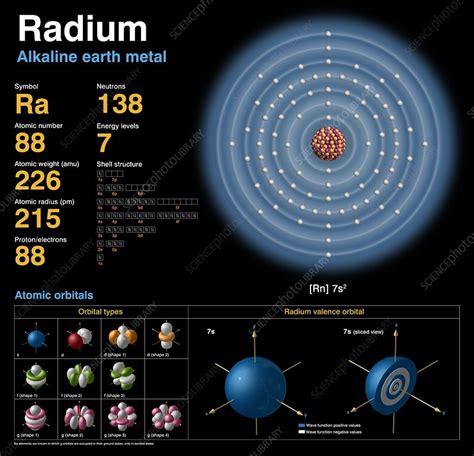 Diagram Of Radium by Radium Atomic Structure Stock Image C018 3769 Science