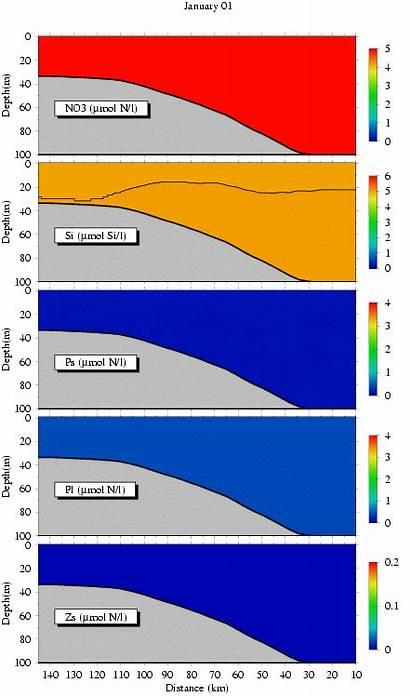 Modeling Fvcom Dynamics Ecosystem Experiments Zone Mixing
