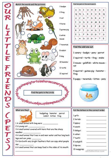 pets  vocabulary exercises worksheet  esl