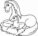 Coloring Horse Horses Pages Mom Printable Animals Animal Colouring Foal Bubakids Spirit Fantasy Coloringbay Getcolorings Sheets Cartoon Printables Popular Books sketch template