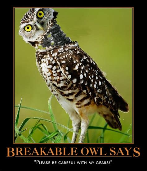Inspirational Quotes With Owls Quotesgram