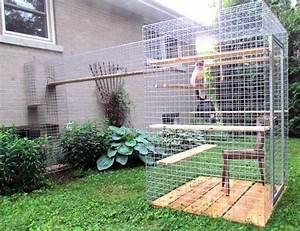 Maison Pour Chat Extérieur : un enclos pour chat catio n est pas une prison ~ Premium-room.com Idées de Décoration