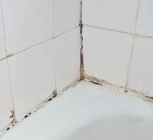 Schimmel Im Putz : pilz und schimmel im bad badreiniger bad ~ Watch28wear.com Haus und Dekorationen