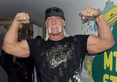 Hulk Hogan Wants A Role In 'the Expendables 3,' Darren