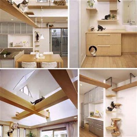 Guide To Building You Own Cat Trees!  Redflagdealscom Forums