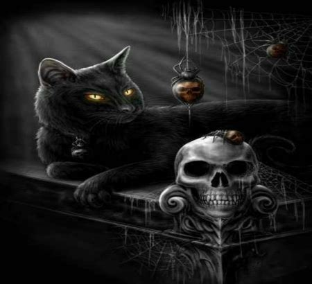 halloween cat fantasy abstract background wallpapers