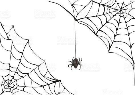 spider web drawing with spider spiderweb big black spider web black scary spider poison
