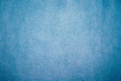 texture blue rug  leather hd photo  mockaroon atmockaroon  unsplash