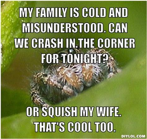 Spider Memes - spider meme misunderstood spider meme generator my family is cold and funny pinterest