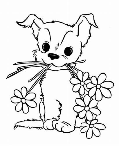 Coloring Puppy Pages Flowers