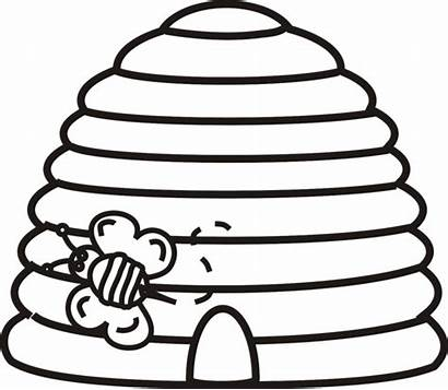 Bee Beehive Hive Clip Clipart Outline Coloring
