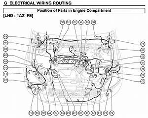 Toyota Rav4 Camshaft Position Sensor Location  Toyota  Free Engine Image For User Manual Download