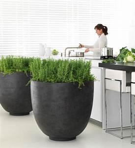 Obi Pflanzkübel Beton : pflanzk bel beton rund anthrazit im greenbop online shop kaufen ~ Watch28wear.com Haus und Dekorationen