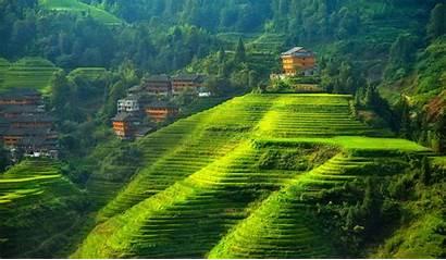 China Landscape Hill Terraced Field Desktop Background