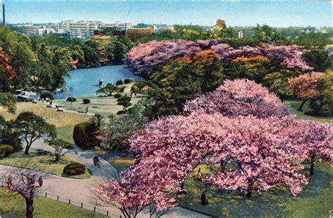 shinjuku gyoen national garden shinjuku gyoen national garden shinjuku c 1960 tokyo