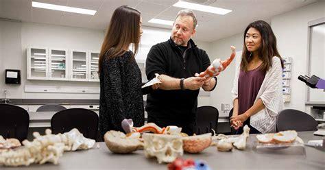 degrees programs faculty staff central enrollment