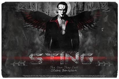 Sting Wwe Wrestler Nwo Wallpapers Wcw Meme