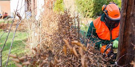 stromleitung finden app stadtwerke kappen kleing 228 rtnern der kolonie waldesgr 252 n die stromleitung