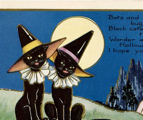 vintage halloween witch cats  graphics fairy