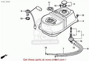 Honda Elite 80 Vacuum Diagram  Honda  Auto Wiring Diagram