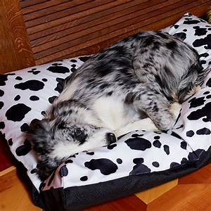 best orthopedic dog beds for large dogs breed dogs picture With best dog beds for large breeds