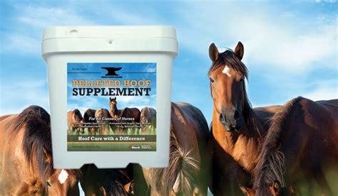 hoof supplement horse horses