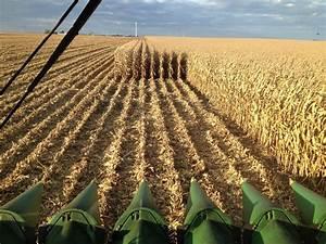 Farming 101 | The Farmer's Story