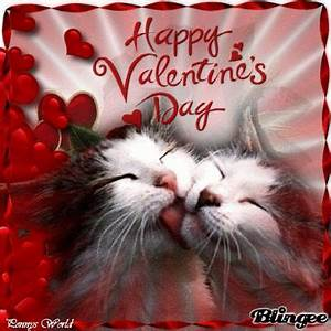 Happy Valentines Day cats   Meow Meow   Pinterest ...