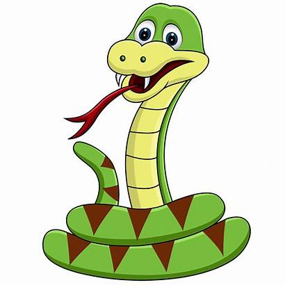 Snake Clipart Head Snakes Anaconda Riebeek Valley