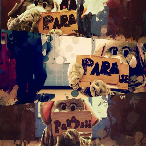 coldplay paradise capturesoul