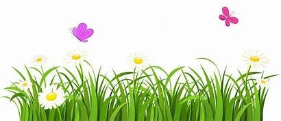 Grass Clipart Clip Tree Nature Trees Flowers