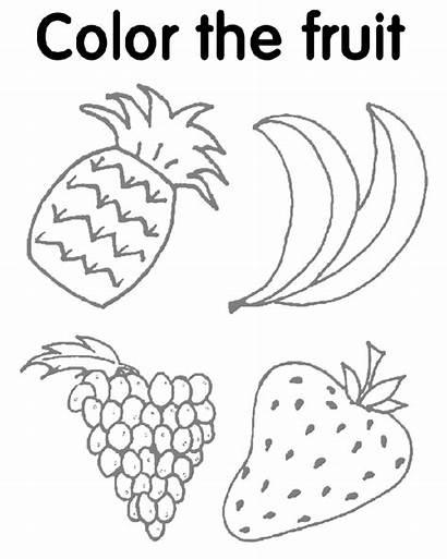 Worksheet Activity Fruit